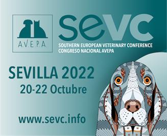 SEVC 2019